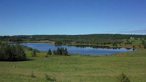 La Tourbière du Lac de Bellefontaine