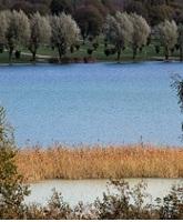 Le lac de Clairvaux