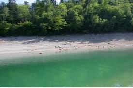 Le lac et Barrage de Vouglans
